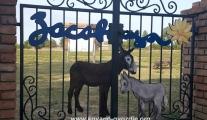 kovane-kapije-sa-siluetama-zivotinja-zasavica-rezervat-gate-animal-siluete