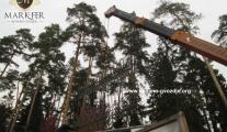 montaza-kovane-ograde-u-moskva-mark-fer-04